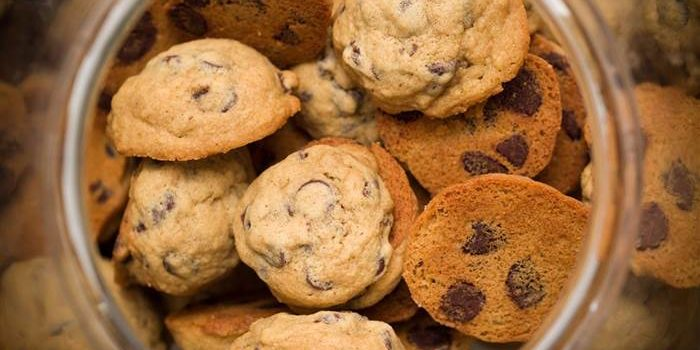 GD Diaries: I Just Want a Cookie!